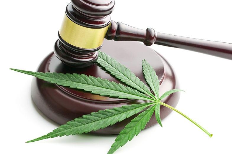 Episode 97: Medical Marijuana